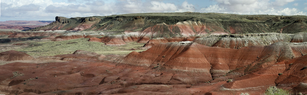 Painted Desert After the Rain