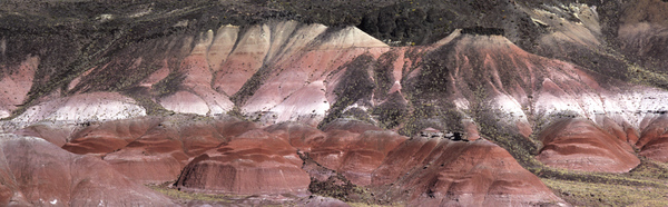 Painted Desert Panorama 1