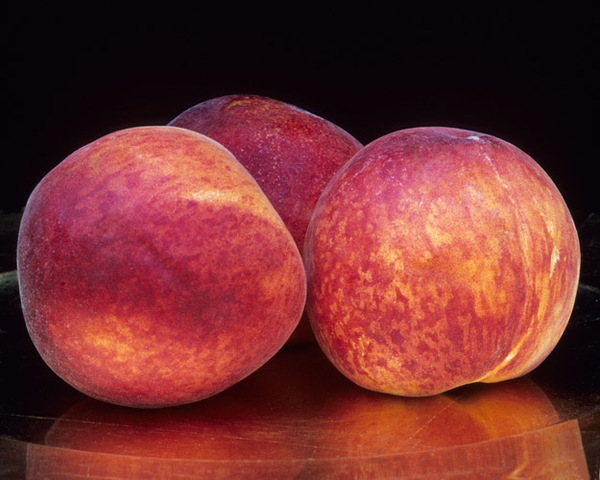Luscious (peaches)
