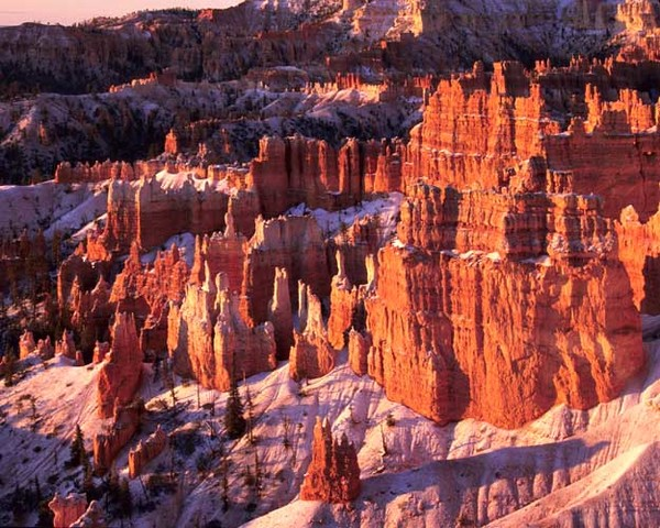 First Light, Bryce Canyon